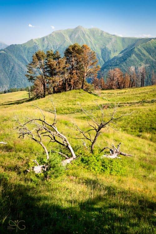 Поляна в горах Дагестана
