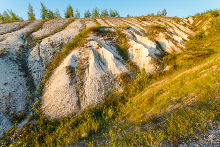 Формы эрозии в балке между меловыми холмами в Стенках-Изгорьях