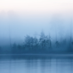 Полночь в тумане