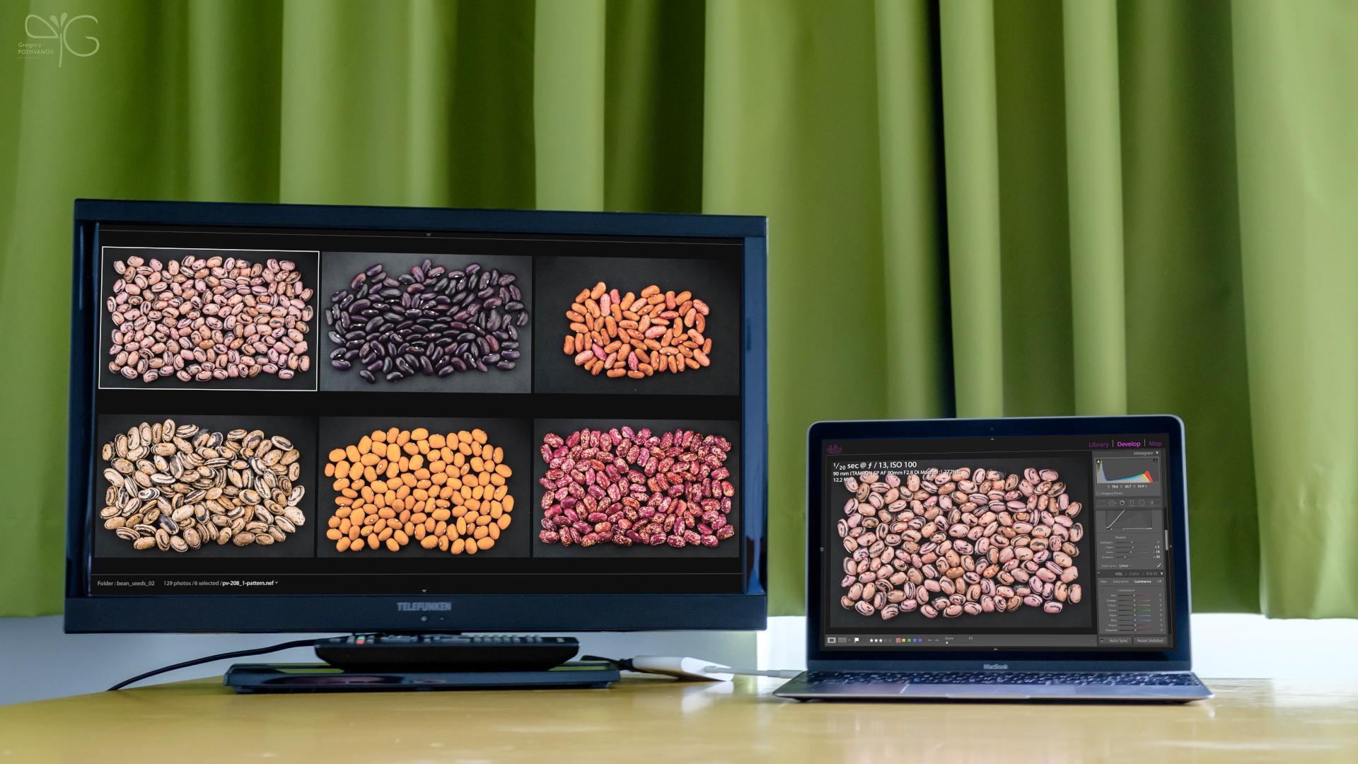 Color profile for Telefunken TV in MPI Guesthouse Golm